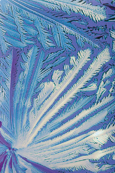 Light microscopic image of magnesium crystals